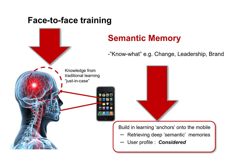 diagram of the relationship of face-to-face training and semantic memory