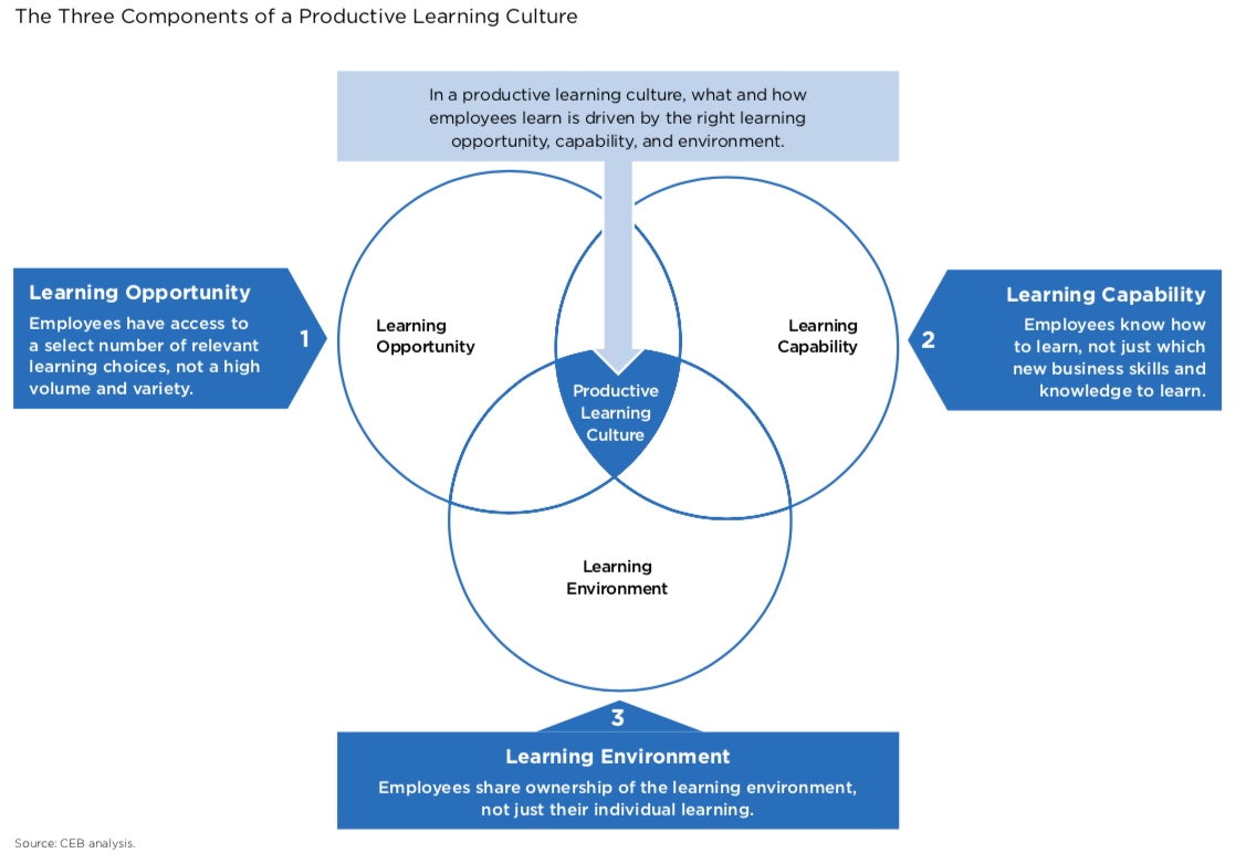 A chart examining the three components (learning opportunity, learning capability, and learning environment) of a productive learning culture.