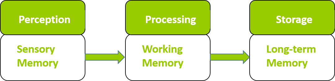 Graphic shows the three levels of memory: Perception for sensory; Processing for working; and Storage for long-term memory.